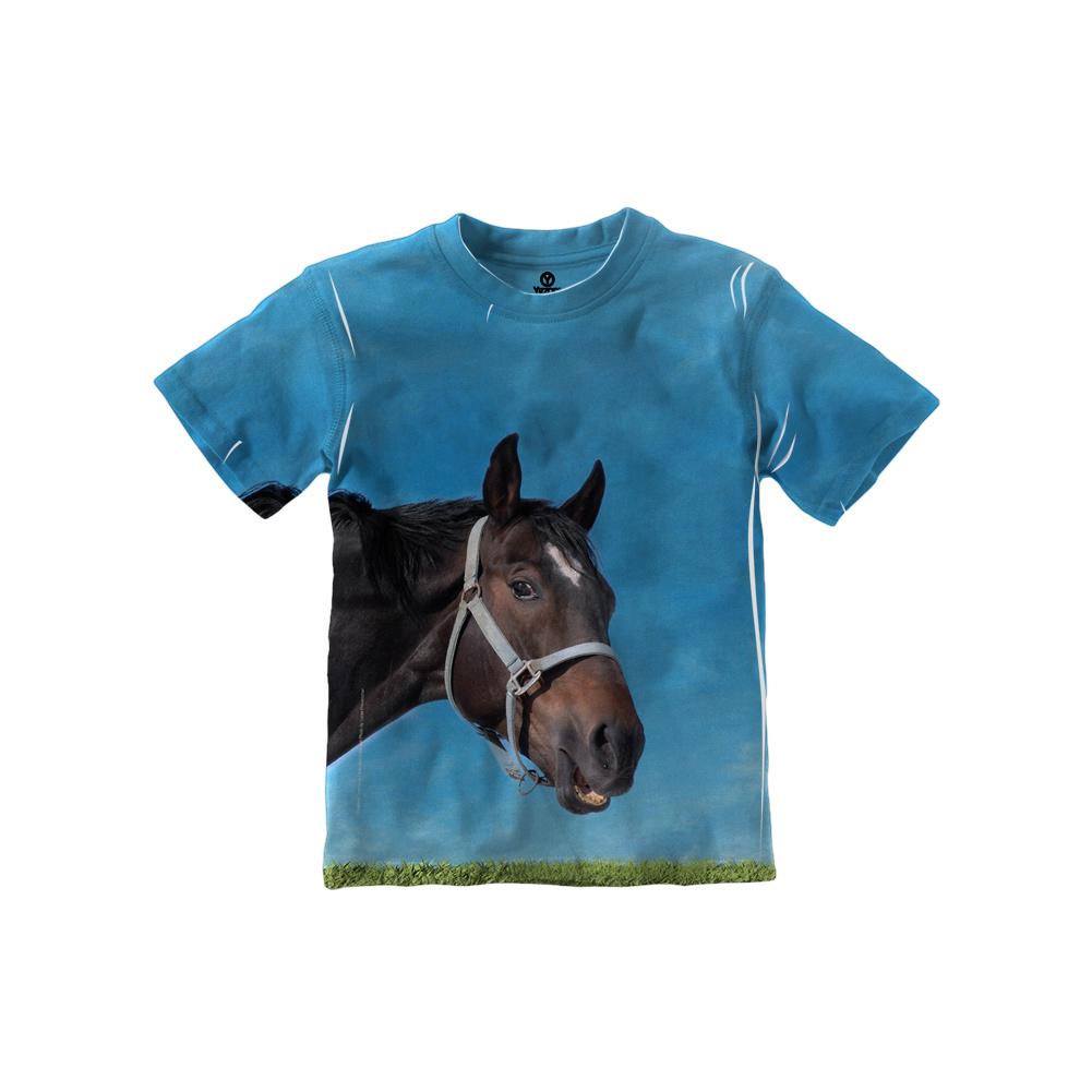 Curious Black Horse