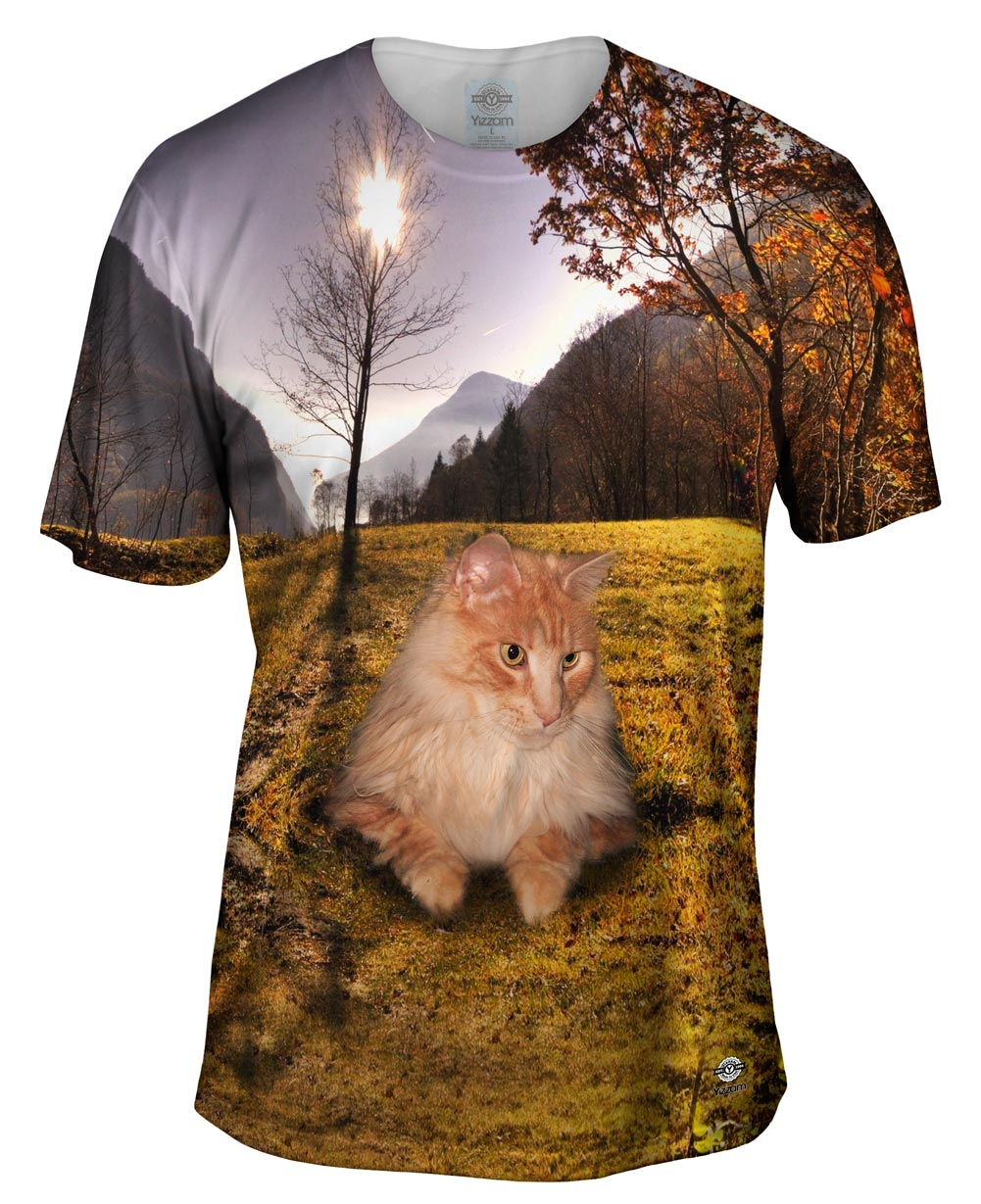 Cool Hill Cat